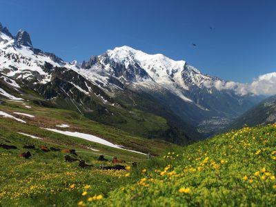 Haute Savoie - Mont blanc